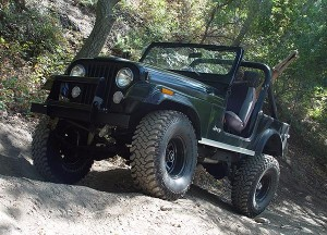 CJ7 At Forest