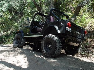 CJ7 At Forest Part 2